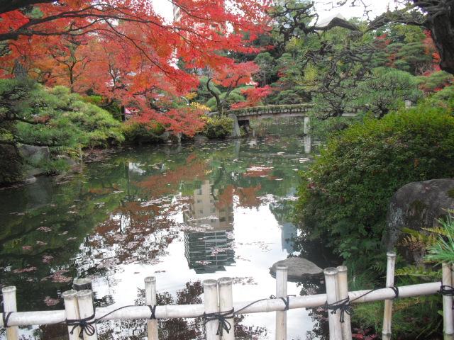 神戸 日本庭園 相楽園